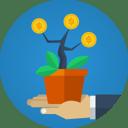 money-plant.png
